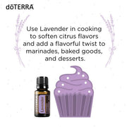 Lavender Essential Oil Touch | Lavandula angustifolia