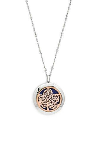 Rose Gold & Silver Toned Essential Oil Diffuser Necklace