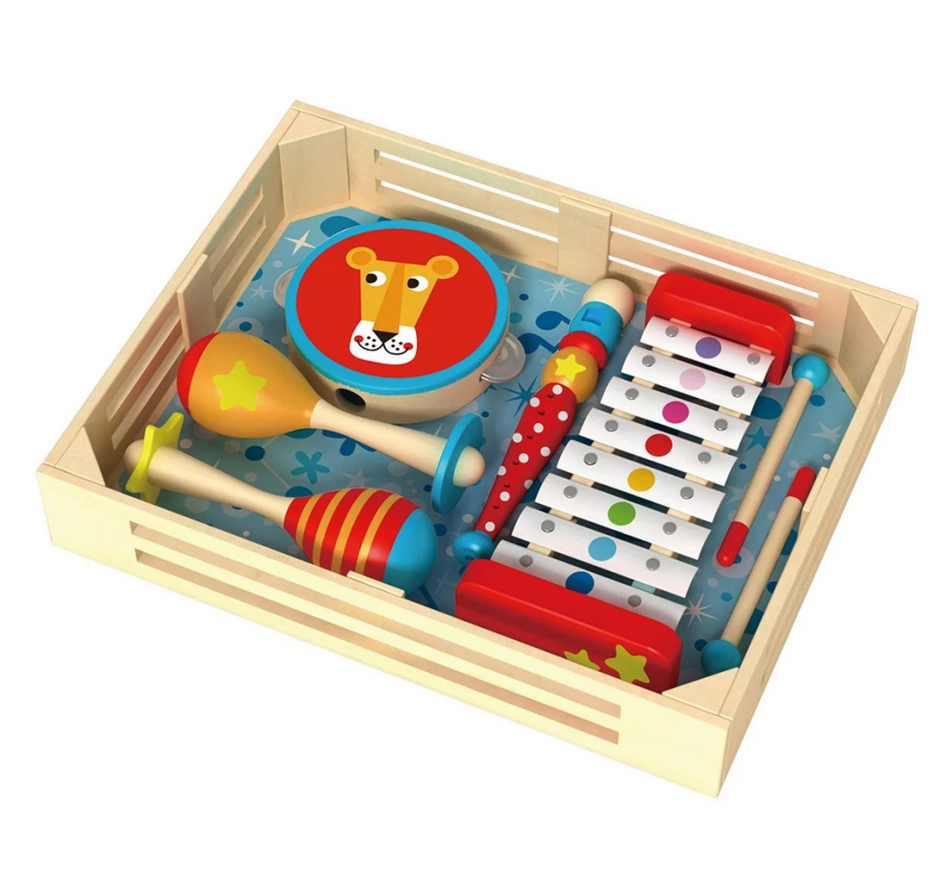 TookyToy Musical Instrument Set