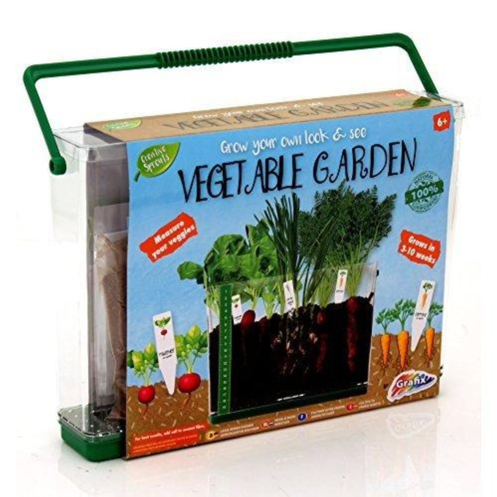 Creative Sprouts See Through Vegetable Garden
