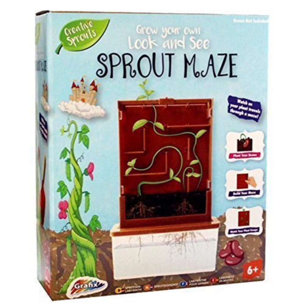 Grafix Grow Your Own Sprout Maze