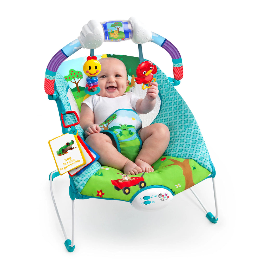 Baby Einstein Bouncer Caterpillers Day at Park