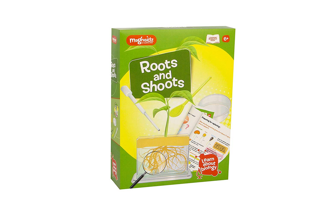 Magnoidz Roots & Shoots Science Kit
