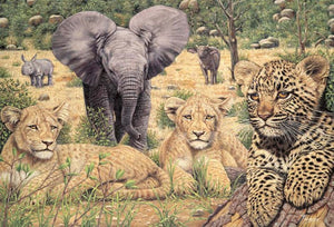 Adult Puzzle - Baby Big 5 1500 Pieces