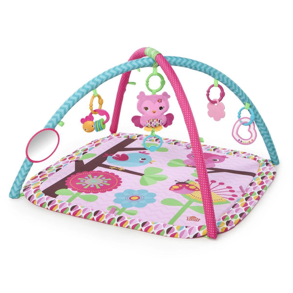 Bright Starts Charming Chirps Activity Gym