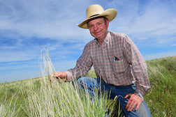 Ranchers, state work to battle weeds