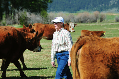 Endecott Ranch works to preserve watershed