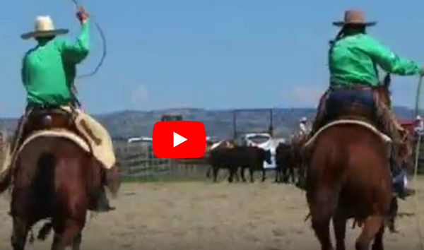 Ranch rodeo at Custer Ranch Rodeo