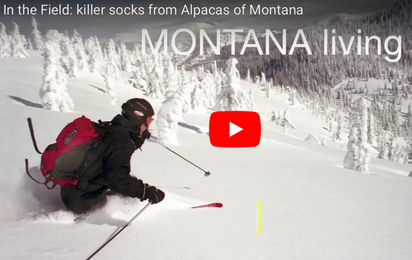 Field Test: alpaca socks from Alpacas of Montana