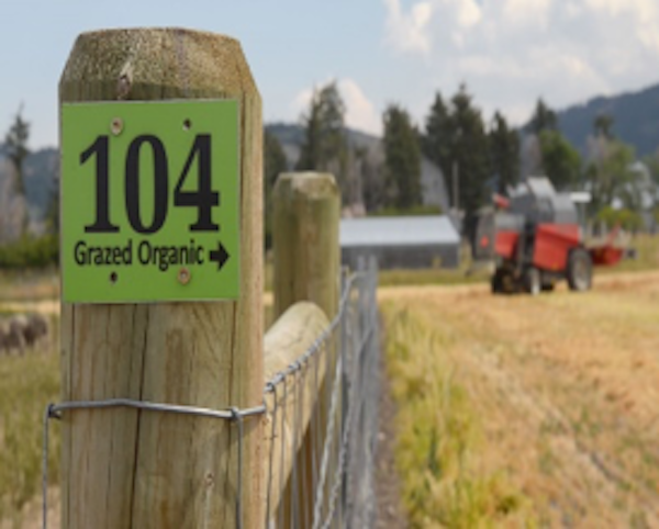 Montana farm event focuses on organic practice