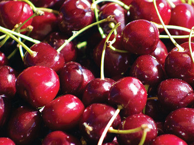 Cherry expert speaks at growers' meeting