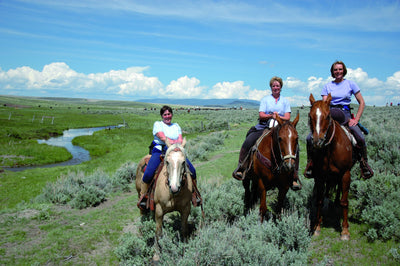 An authentic Montana experience:  High Country cattle drive