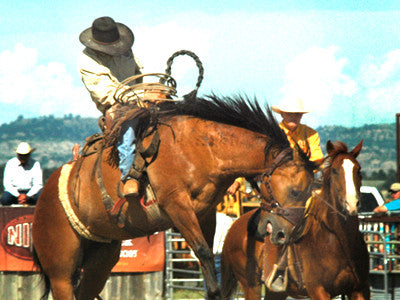 Real cowboys: the Custer Ranch Rodeo