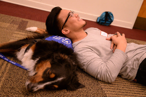 Good with dogs: benefits of pet therapy