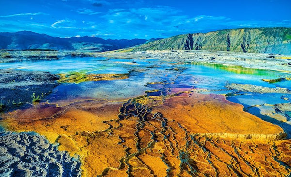 Keys to life's origins found in Yellowstone Park