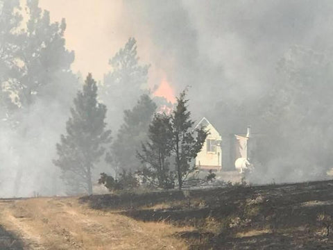 miles city lodgepole complex trees burning