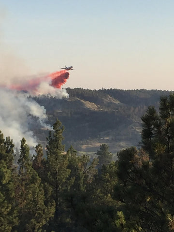 wildfire fighting plane