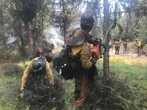 crews build fire line on the rice ridge fire in seeley lake aug 2 2017