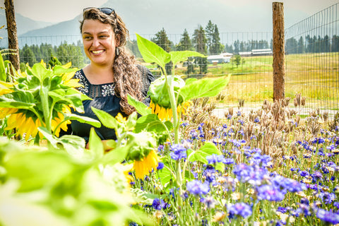 heidi fleury, Natural Resource and Conservation Service, Lake County Montana, bee pollinator flowers