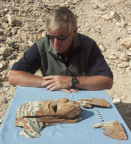 don ryan  egyptologist