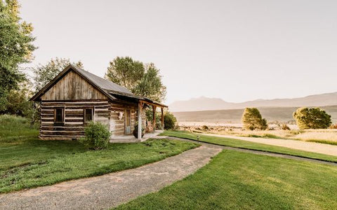 montana cabin on lake, arthur blank foundation, montana living