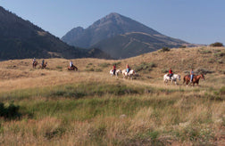 horses near chico hot springs montana
