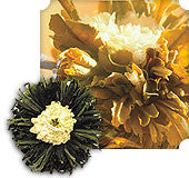 Emerald Sun Flowering Green Tea $2 each - Montana Living - 1