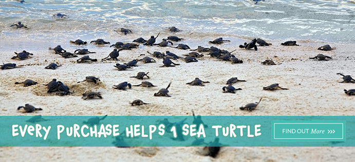 Treat Your Pets. Save Sea Turtles.