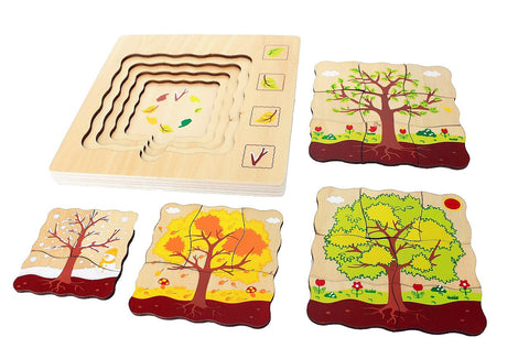 Tree Life-Cycle Puzzle