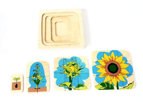 PinkMontesori Flower Life-Cycle Puzzle - Pink Montessori Montessori Material for sale @ pinkmontessori.com