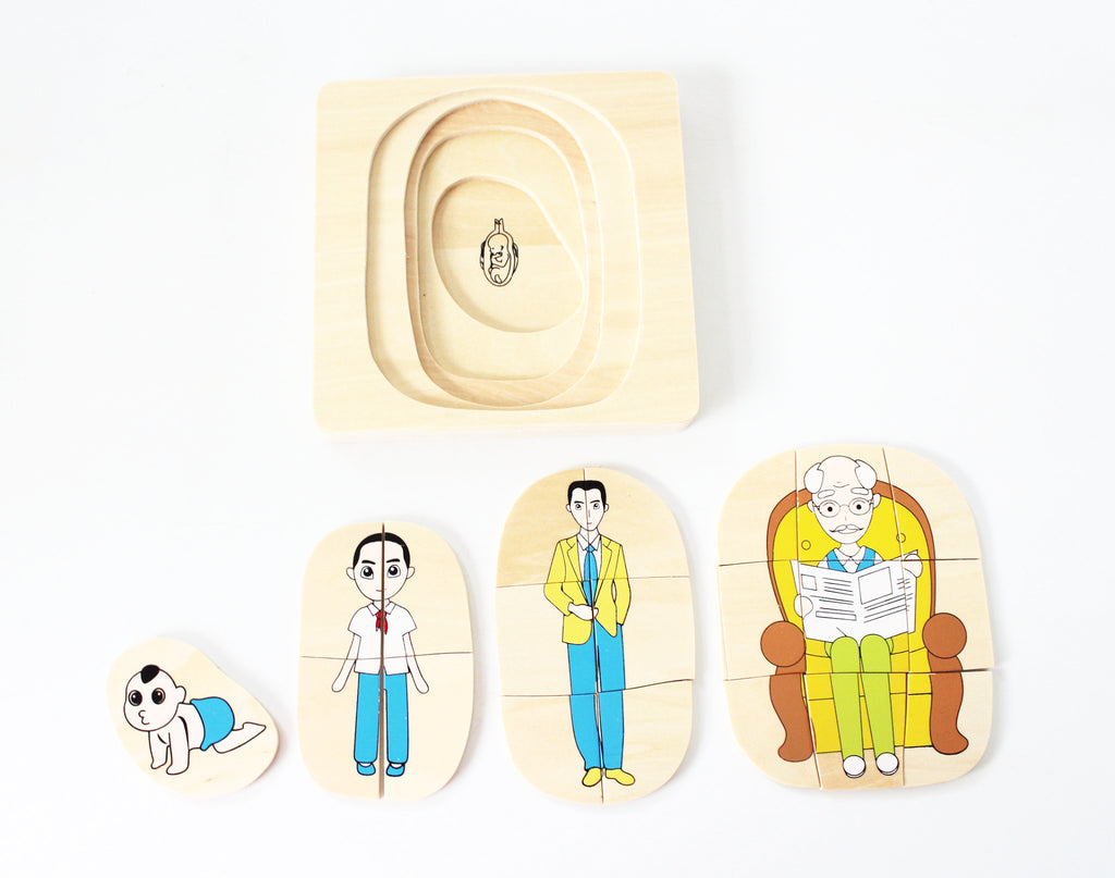 PinkMontesori Man's Life Stages Puzzle - Pink Montessori Montessori Material for sale @ pinkmontessori.com
