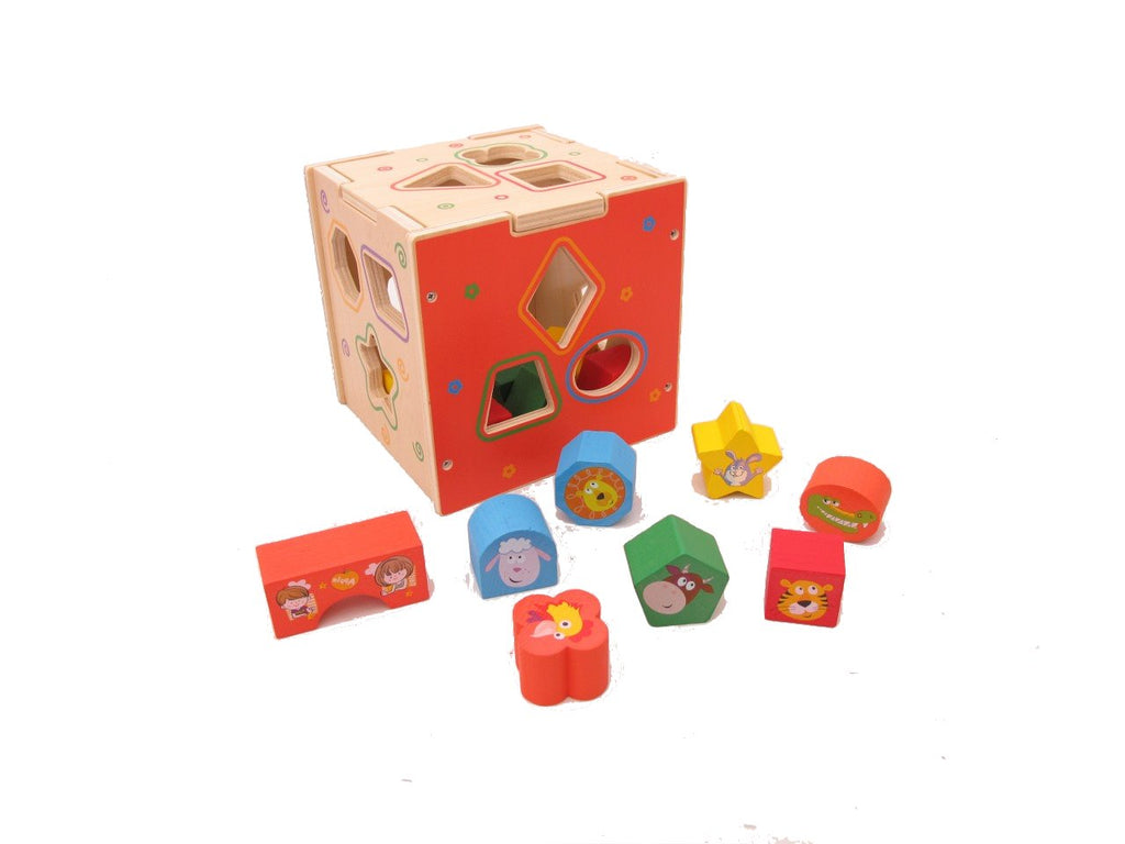 Shape Sorting Cube Box