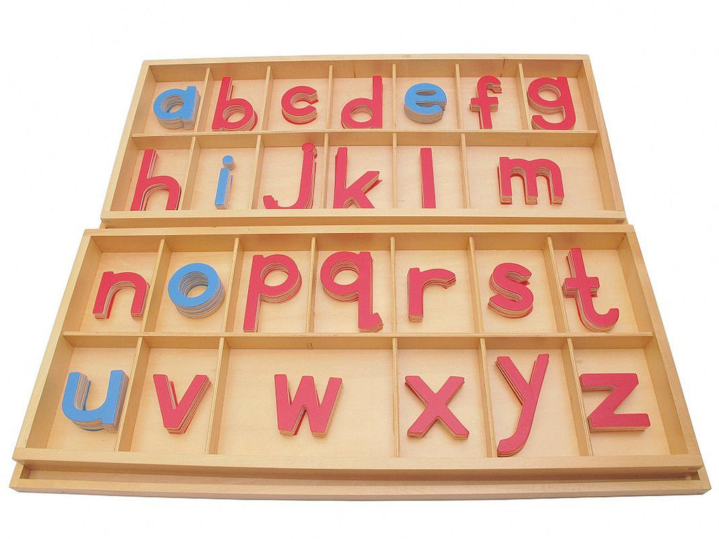 PinkMontesori Large Movable Alphabets ( Print ) with Boxes - Pink Montessori Montessori Material for sale @ pinkmontessori.com - 1