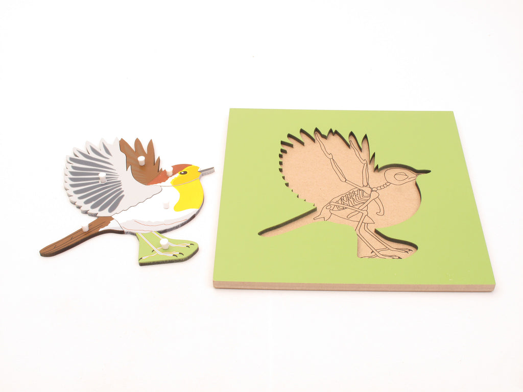 PinkMontesori Bird Skeleton Puzzle - Pink Montessori Montessori Material for sale @ pinkmontessori.com - 1