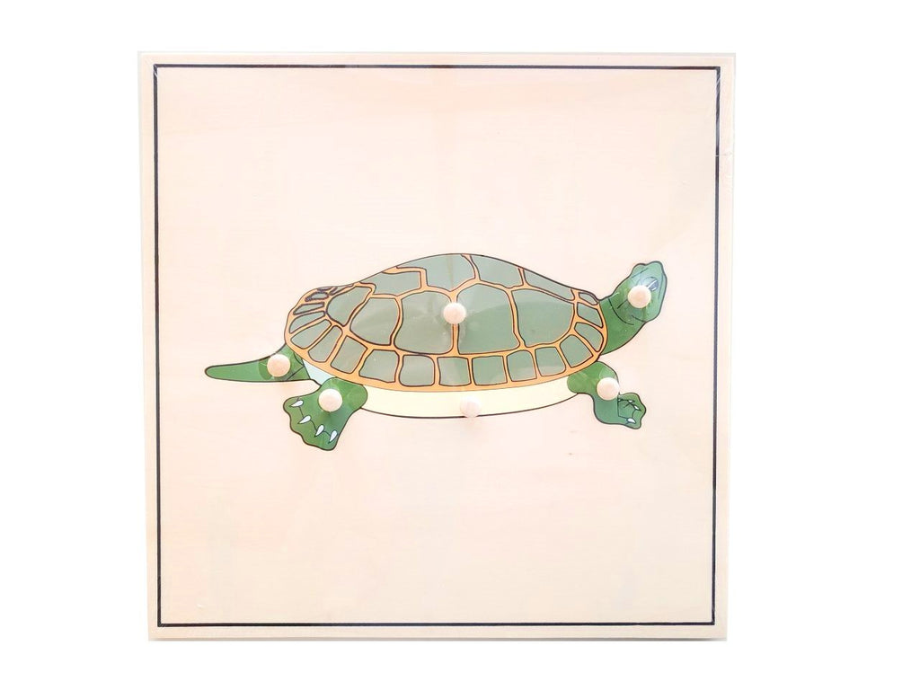 Turtle Skeleton Puzzle (new)