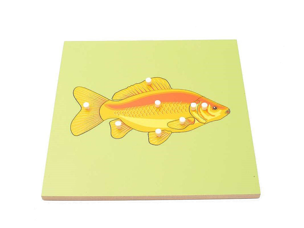 PinkMontesori Fish Skeleton Puzzle - Pink Montessori Montessori Material for sale @ pinkmontessori.com - 1