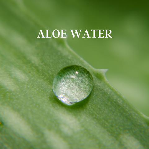 organic aloe is used in our product line in the Hidden Forest for skin hydration and healing