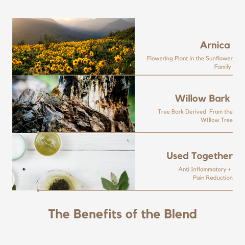 The Benefits Arnica and Willow Bark for Painful Dry or Inflamed Skin