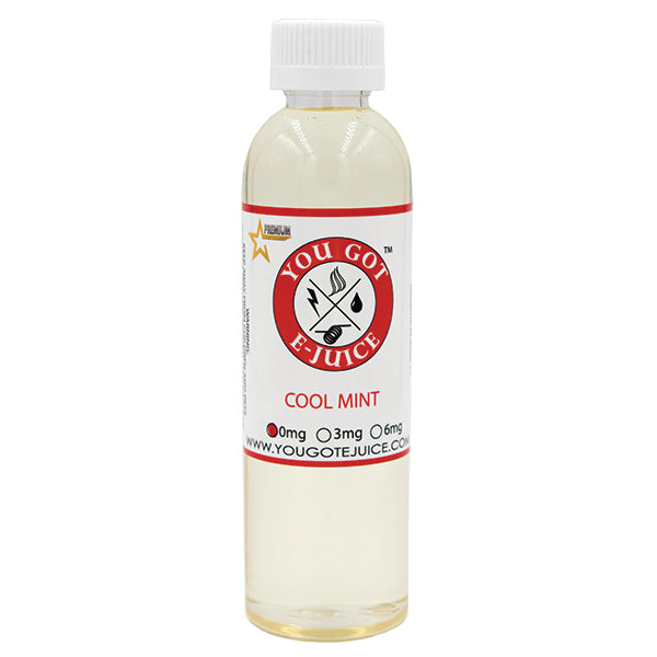 Cool Mint 240ML - yougotejuice.com