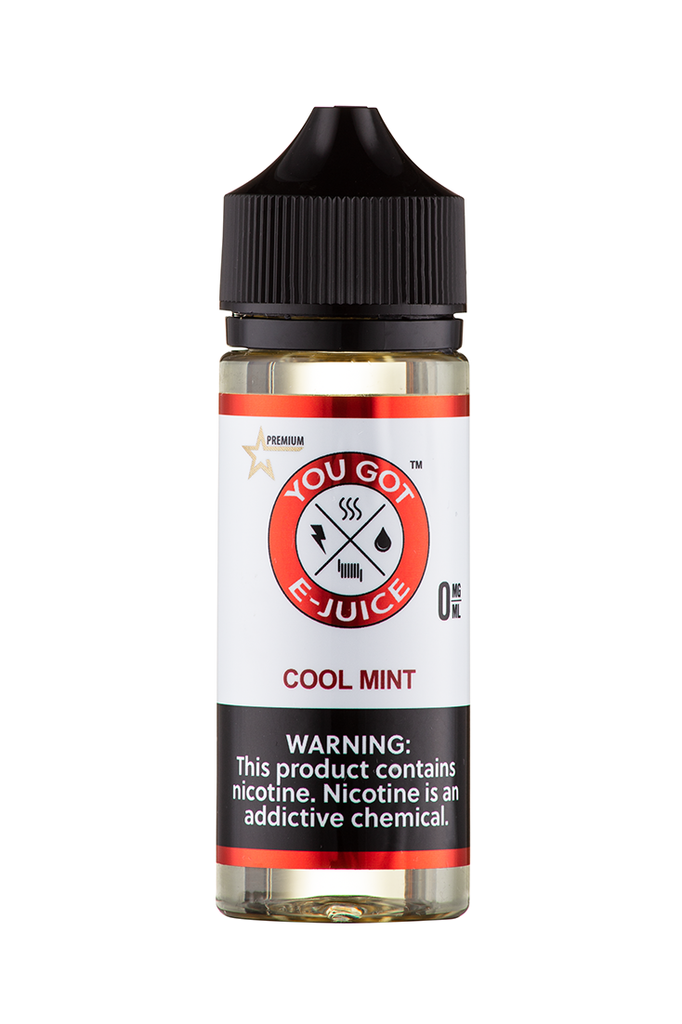 Cool Mint 120ML - yougotejuice.com