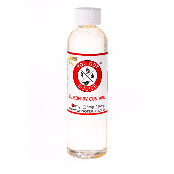 Blueberry Custard 240ML - yougotejuice.com