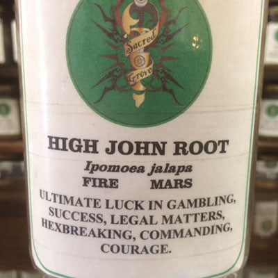 High John Large Root