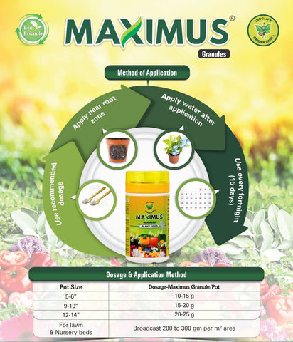 How-to-apply-fertiliser-granules-root-bridges-buy-plants-online