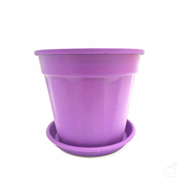Pots Purple 10