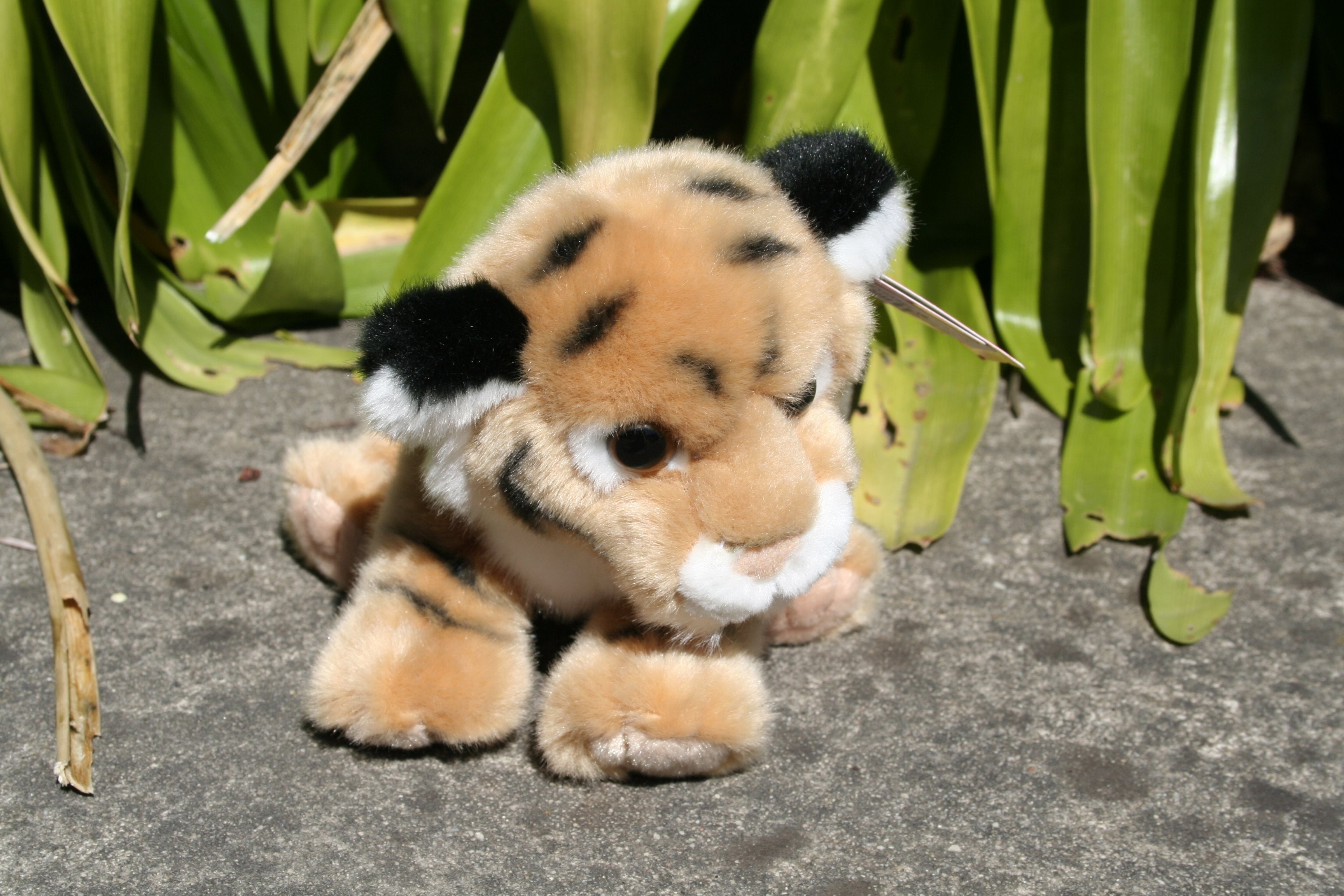 "3 . B110480B-  8 "" Bengal Plush Tiger GOLD TAMARR PRE CHRISTMAS  SALE 50% OFF MINIMUM  4"
