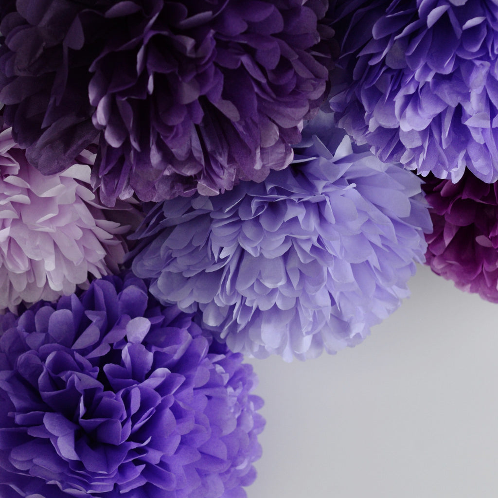 Colored Pom Sets - Purple Haze Pom Poms Party Set