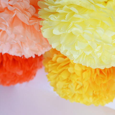 Colored Pom Sets - Sunrise Pom Poms Party Set