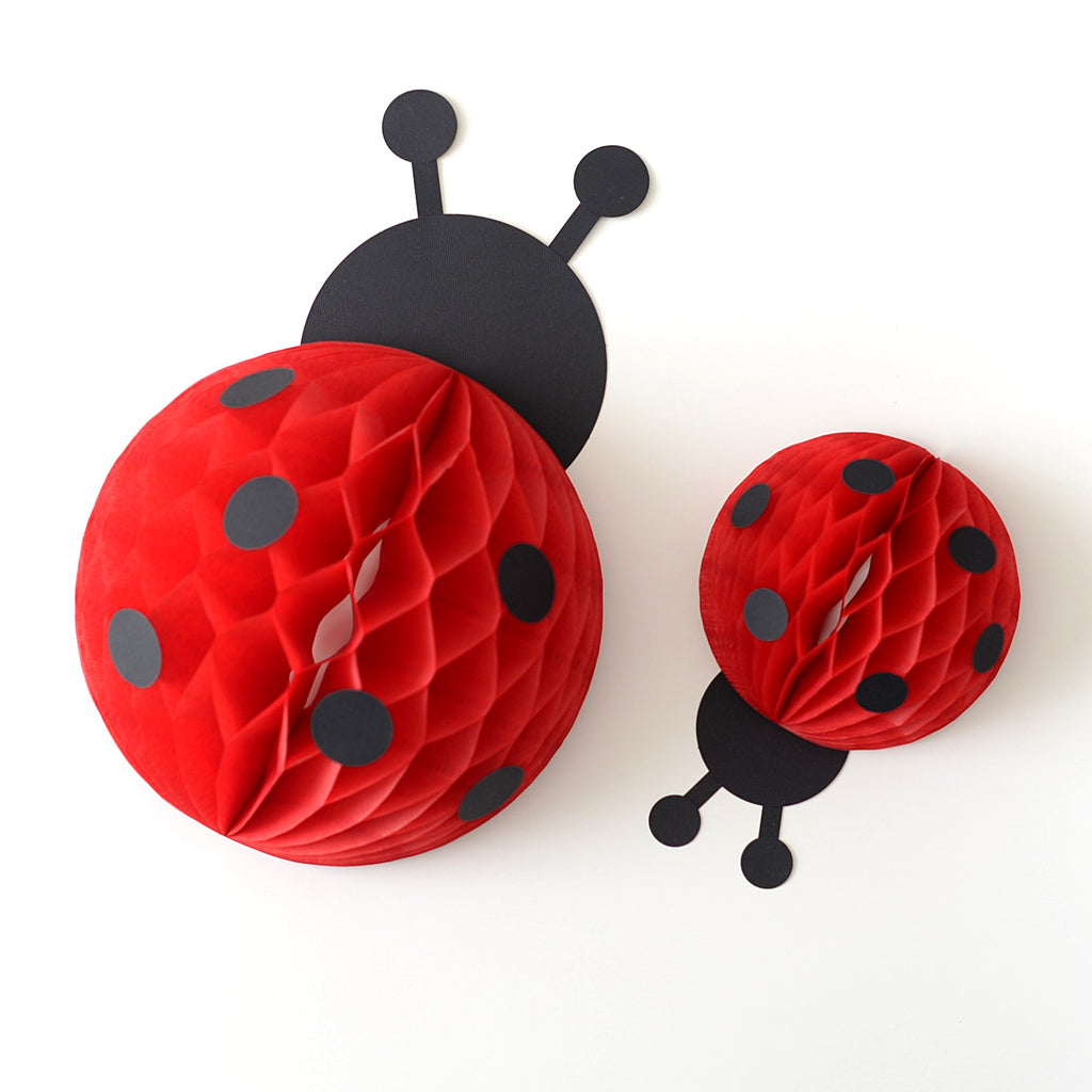 Ladybug Love Bug honeycomb kit - baby shower first birthday party decoration