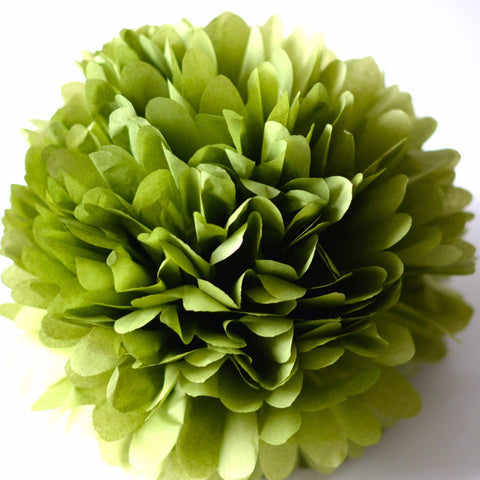 Aloe tissue paper pom pom - Decopompoms - party decoration boutique
