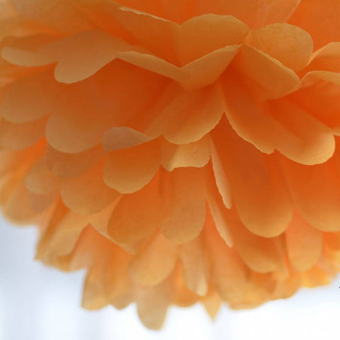 Apricot tissue paper pompom - Decopompoms - party decoration boutique